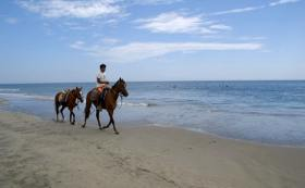 Horse riding along the sea coast on the vacation