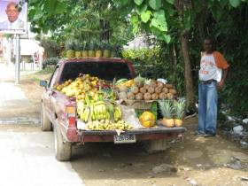 Las Terrenas fruit vendor