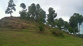 Hill for building developement for sale